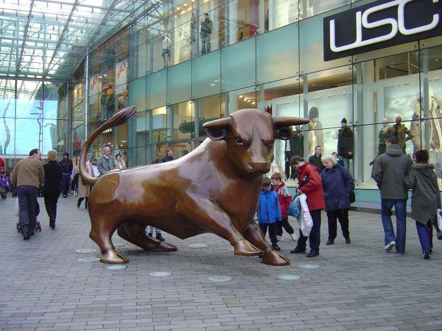bull-ring